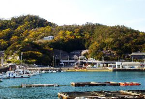 和歌浦漁港の漁船